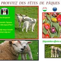 JAMBON  PAQUES-piéce +-1.3kg