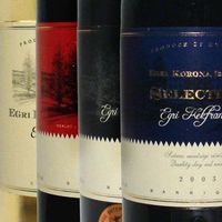 Egri Cab Sauvignon-Kekfrankos Selection